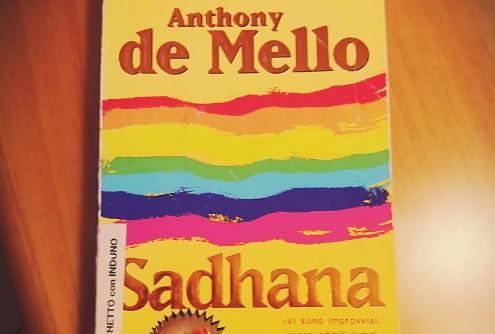 nouriti-de-mello-sadhana-500